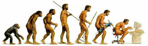 Privacy Policy - ape to geek - human evolution